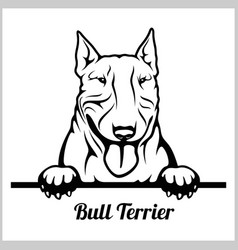 Bull terrier - peeking dogs - breed face head vector