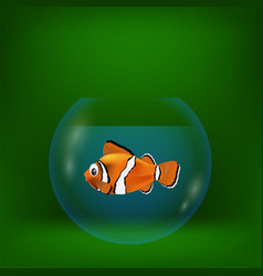 Colorful with sea clown fish vector