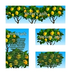 Four original cards with the image of lime trees vector image