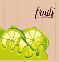 fresh sliced lemon fruits vector image