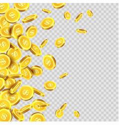Gold coins rain or golden money coin pattern on vector