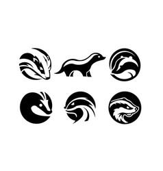 Skunk animal vector