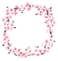 Spring wreath with cherry blossoms Place for text vector image