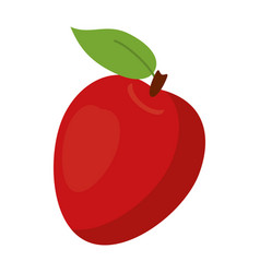 apple ripe fruit icon vector image vector image