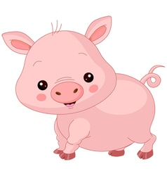 Farm animals Pig vector image