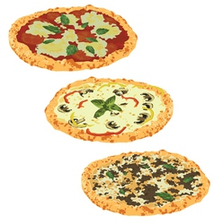 set of different pizzas vector image vector image