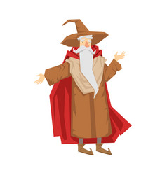 Old bearded wizard in the pointed hat colorful vector