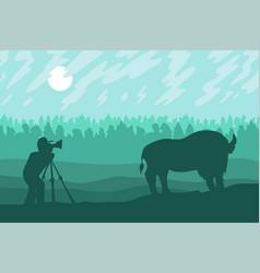 Photographer photographs bison vector
