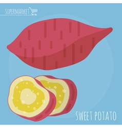 Sweet potato icon vector