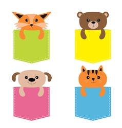 Animals in the pocket Cute cartoon colorful dog vector image vector image