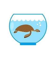 Sea turtle in an aquarium Water animal Pet in vector image