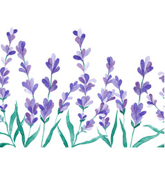 watercolor border with lavender hand vector image vector image