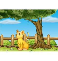 A young tiger inside the fence vector image