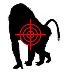 Baboon crosslines vector