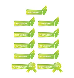 leaf green banner set vector image