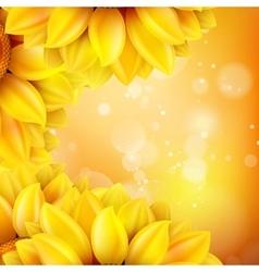 Macro SunFlower Background EPS 10 vector