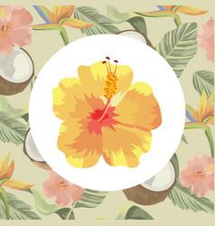 tropical flowers cartoon vector image
