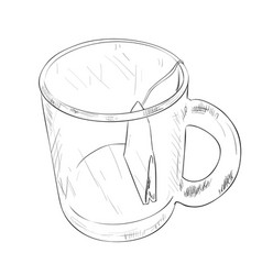 sketch of cup with tea bag vector image vector image