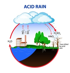 Acid rain vector image