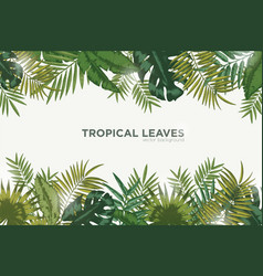 horizontal background with green leaves of vector image vector image