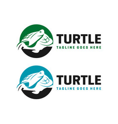 circle turtle logo design template vector image