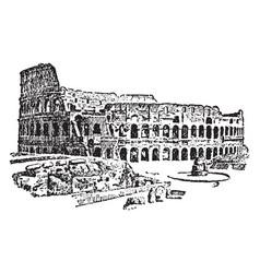 Colosseum at rome greatest roman vector
