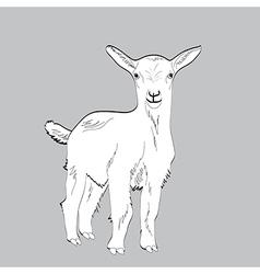 Cute goat vector image