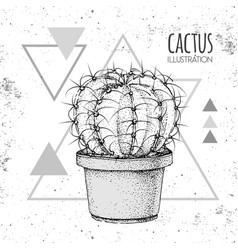 Hand drawing cactus vector