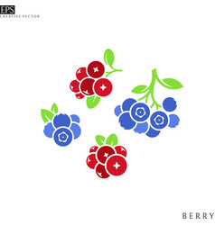 isolated cranberry and blueberry with leaves vector image