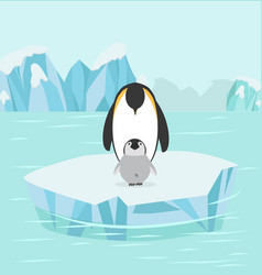 penguin and baby in north pole arctic vector image