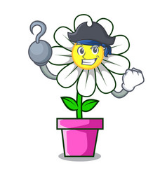 Pirate daisy flower character cartoon vector