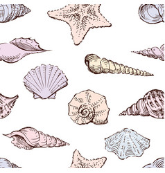 seamless background seashells sketches vector image
