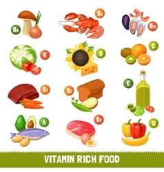 Vitamin Rich Food Products vector image