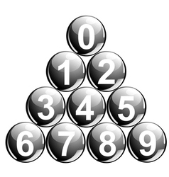 balls with numbers vector image vector image