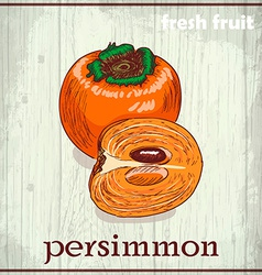 Hand drawing of persimmon Fresh fruit sketch vector image vector image