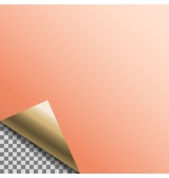 Curled copper foil blank tag vector image vector image