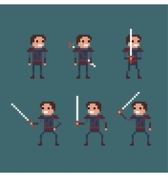 Pixel art fantasy kingdom swordsman warrior vector