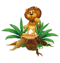 A lion above a stump standing vector image vector image