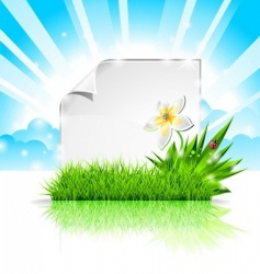 background design on a spring vector image vector image