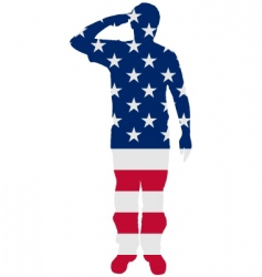 American salute vector image vector image