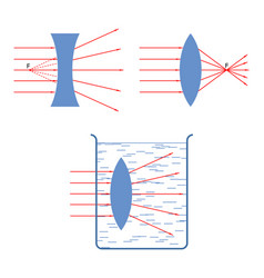 Throw in a collecting rays diverging lens vector