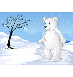 A polar bear freezing vector