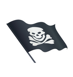 black flag with skull vector image