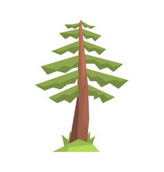 Fir tree colorful cartoon vector