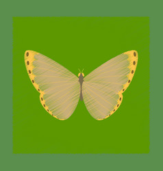 Flat shading style insect butterfly vector