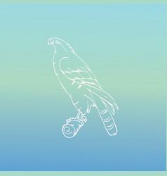 Hand-drawn graphics bird predator bird of prey vector