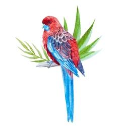 Nice tropical bird vector image