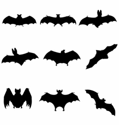 Bats Flying Silhouette detailed vector image