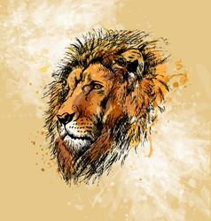 colored hand sketch lion head vector image vector image