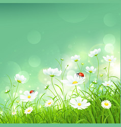 Natural background with flowers vector image